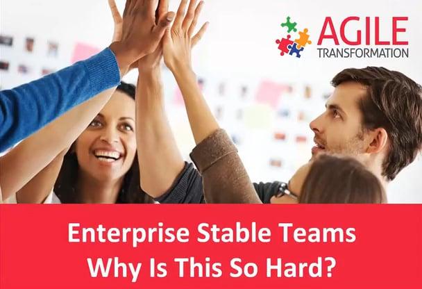 Stable Teams Video